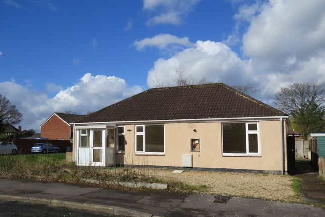 Thumbnail Detached bungalow to rent in Forest Avenue, Cowplain, Waterlooville