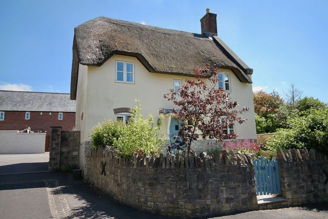 Thumbnail Cottage for sale in Manor Farm Close, Maiden Newton