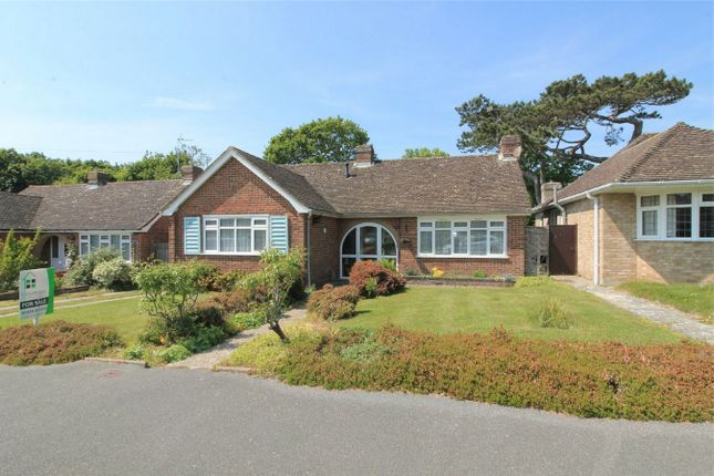 Thumbnail Detached bungalow for sale in Shipley Lane, Bexhill On Sea, East Sussex
