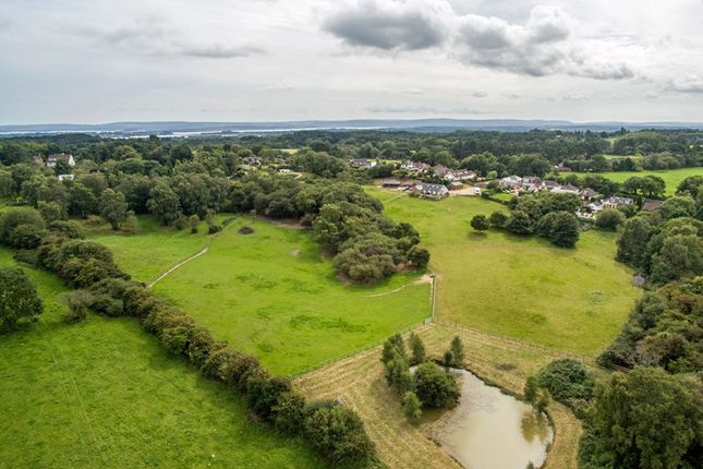 Thumbnail Property for sale in Poole Road, Lytchett Matravers, Poole