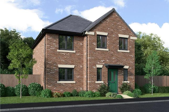 """3 bed detached house for sale in """"The Lawton"""" at Roundhill Road, Hurworth, Darlington DL2"""