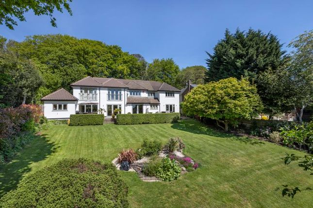 Thumbnail Detached house for sale in Knowle Hill, Wentworth, Virginia Water