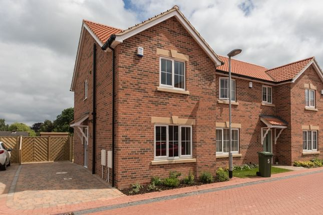 Thumbnail Semi-detached house to rent in D'arcy Close, Winterton, Scunthorpe
