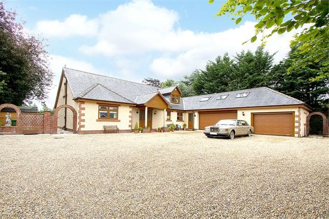 Thumbnail Detached bungalow for sale in The Green, Wetheral, Carlisle, Cumbria