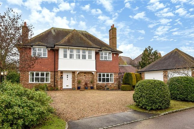 Thumbnail Detached house for sale in Burnmoor Meadow, Finchampstead, Wokingham