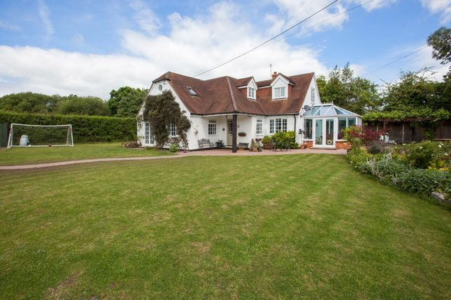 Thumbnail Detached house to rent in Mill Green, Headley, Thatcham