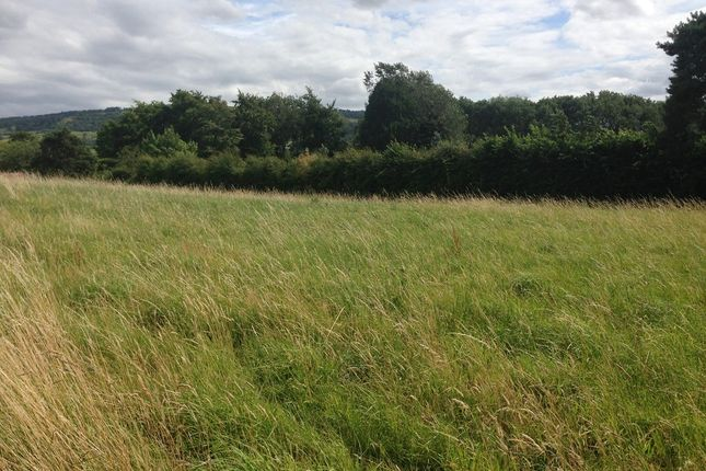 Thumbnail Land to rent in Lower End, Birlingham, Pershore