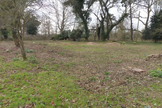 Thumbnail Land for sale in Richmond Road, Saham Toney, Thetford
