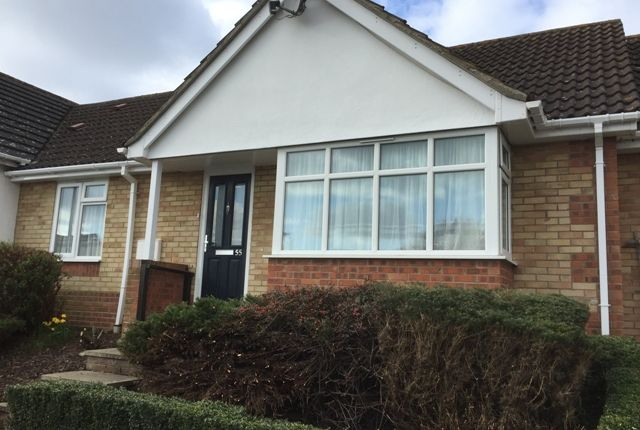 Thumbnail Bungalow to rent in Hawthorn Close, Essex