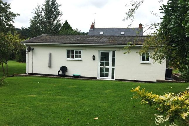 Thumbnail Bungalow to rent in Tynllan Farm, Castle Caereinion, Welshpool