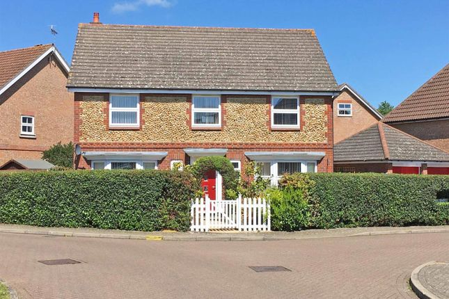 Thumbnail Detached house for sale in Alverton Close, Great Notley, Braintree
