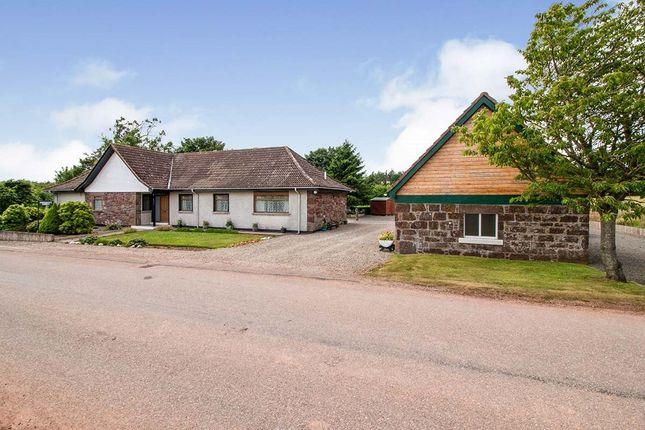 Thumbnail Bungalow for sale in Fordoun, Laurencekirk, Aberdeenshire