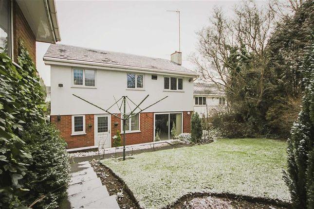 Thumbnail Detached house for sale in Beardwood Meadow, Blackburn