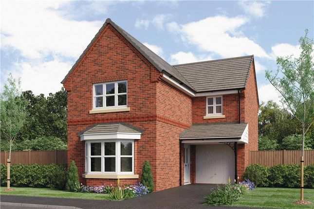 "Thumbnail Detached house for sale in ""Hayfield"" at Oteley Road, Shrewsbury"