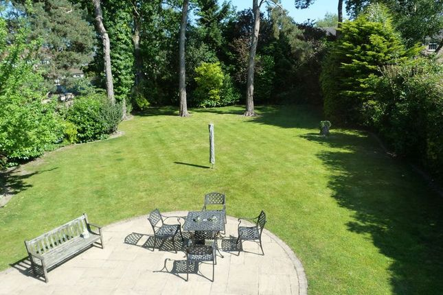 Thumbnail Property to rent in Cannon Hill Road, Wimborne