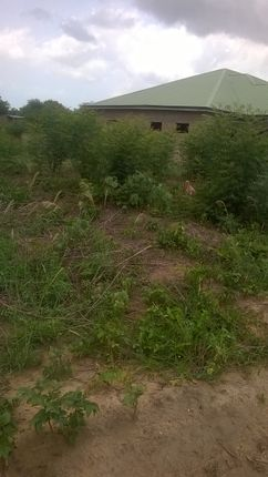 Thumbnail Land for sale in Kasoa, Central Region, Ghana
