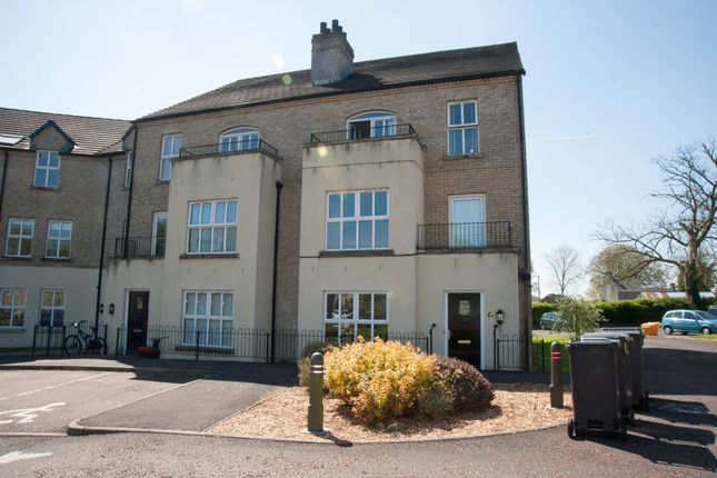 Thumbnail Flat for sale in Trinity Mews, Ahoghill, Ballymena
