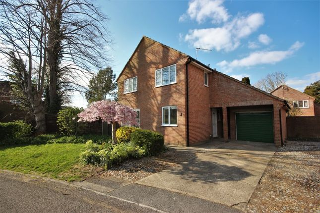 Thumbnail Detached house to rent in Easterfield, Grove, Wantage