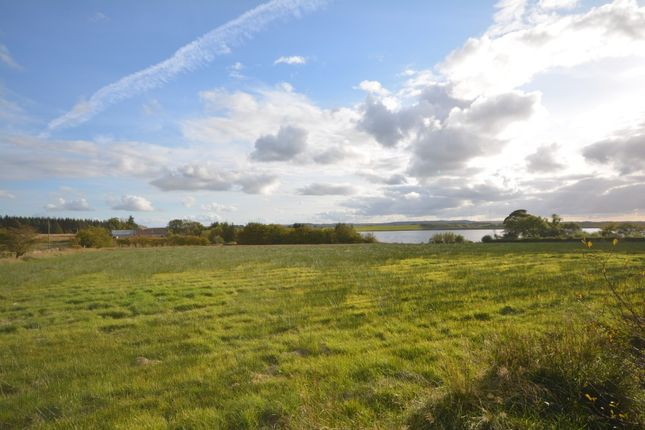 Land for sale in Lochview House, Limerigg, Falkirk FK1