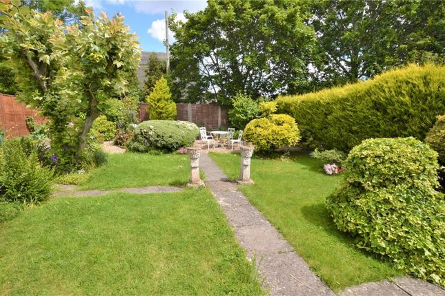 Rear Garden of Hoveland Lane, Taunton, Somerset TA1