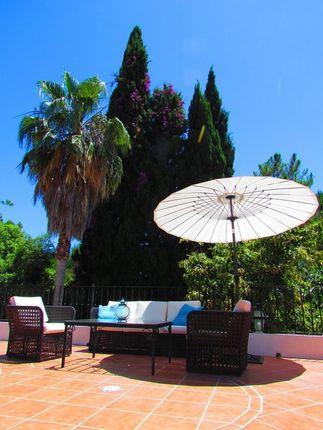 Parasol Sitting of Spain, Málaga, Marbella