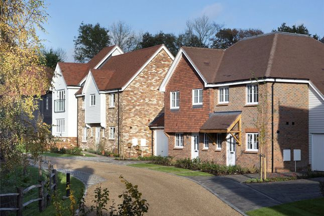Thumbnail Detached house for sale in Cherry Tree Lane, Cranleigh Road, Ewhurst, Surrey