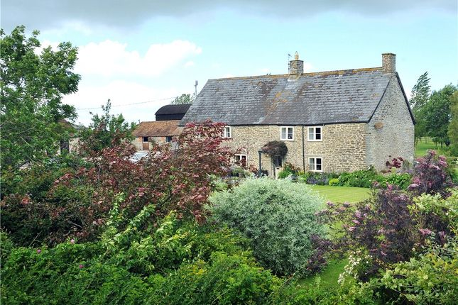 Thumbnail Farm for sale in Nyland, Gillingham, Dorset