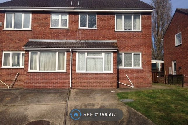 Thumbnail Semi-detached house to rent in Forest Road, Colchester