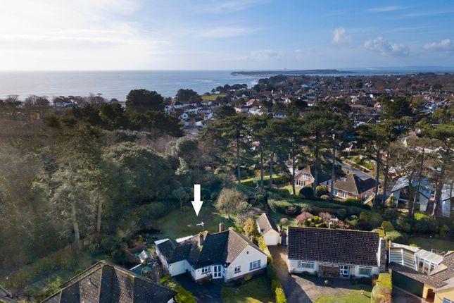 Thumbnail Detached bungalow for sale in Wellington Avenue, Friars Cliff, Christchurch, Dorset
