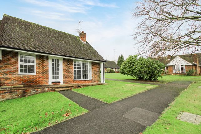 Thumbnail Terraced bungalow to rent in The Welkin, Lindfield