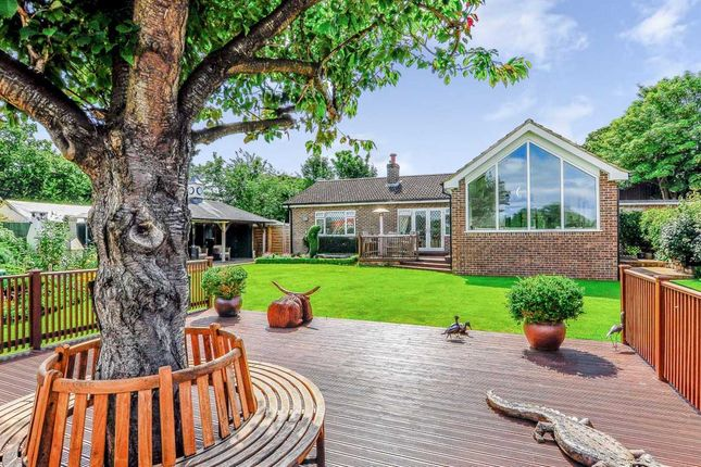 Thumbnail Bungalow for sale in Oak Lodge, Valuation Lane, Boroughbridge