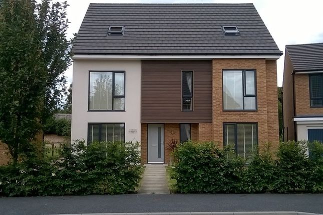 Thumbnail Detached house for sale in Pasture Way, Tickhill, Doncaster, South Yorkshire