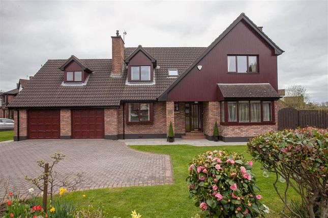 Thumbnail Detached house for sale in 36, Beechwood Grove, Belfast