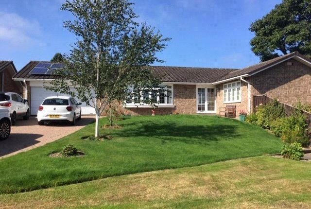 3 bed bungalow for sale in Lansdowne Court, Hexham NE46