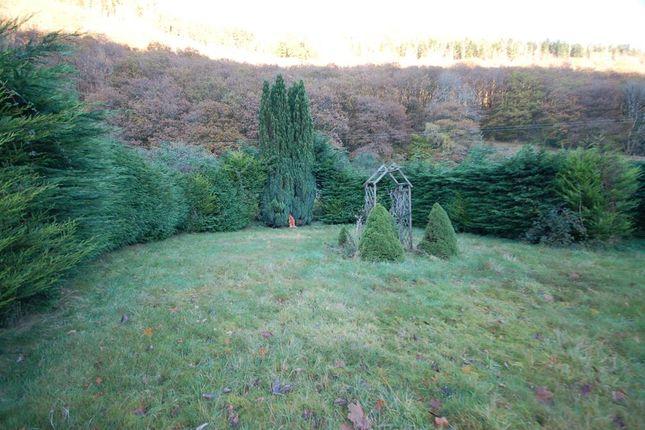 Large Level Rear Garden