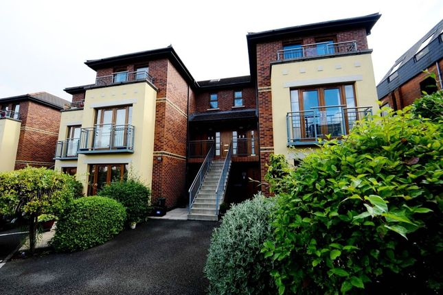 Thumbnail Flat for sale in Dundela Park, Belmont, Belfast