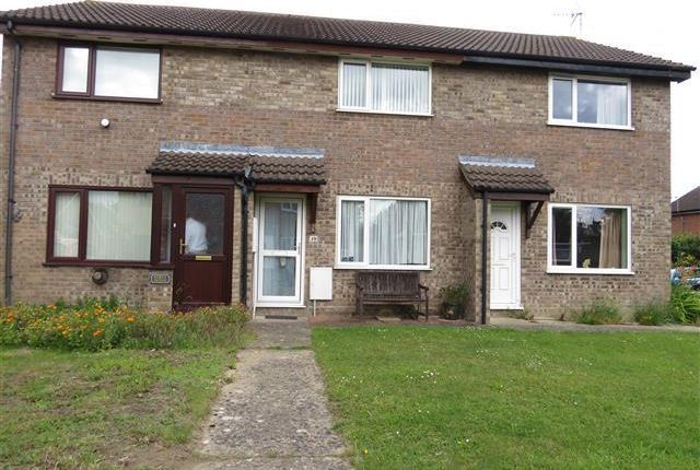 Thumbnail Terraced house to rent in Gainsborough Drive, Halesworth