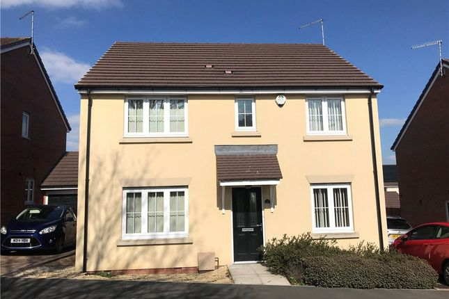 Thumbnail Detached house to rent in Harbin Close, Yeovil, Somerset