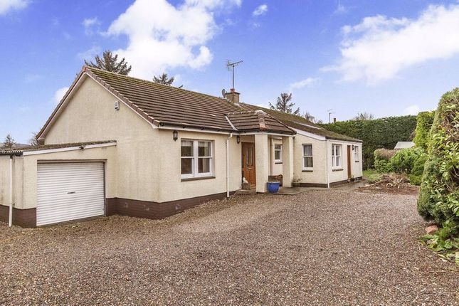 Thumbnail Bungalow for sale in Bonfield Road, Strathkinness, Fife