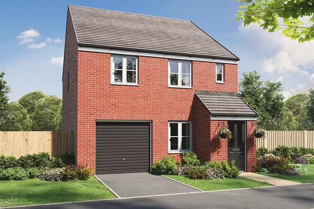 """Thumbnail Semi-detached house for sale in """"The Delamare"""" at Old Cemetery Road, Hartlepool"""