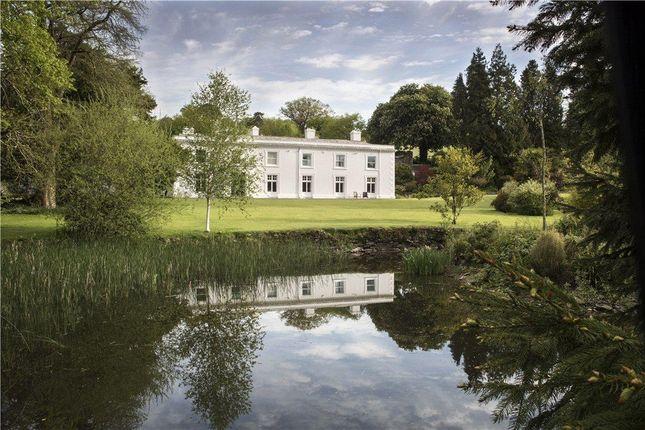 Thumbnail Detached house for sale in Bridestowe, Edge Of Dartmoor, Devon