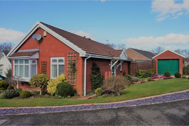 Thumbnail Detached bungalow for sale in Chester Close, Pontypool