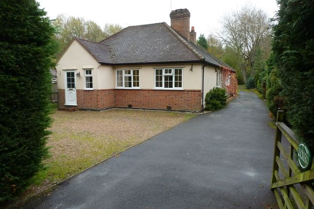Thumbnail Bungalow to rent in Forest Road, Ascot