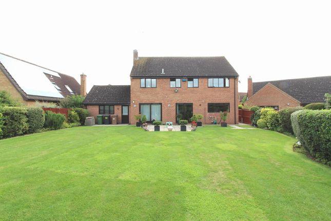 Thumbnail Detached house for sale in Lingwood Park, Longthorpe, Peterborough