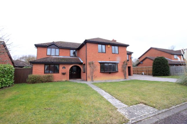 Thumbnail Detached house for sale in The Paddocks, Werrington, Peterborough