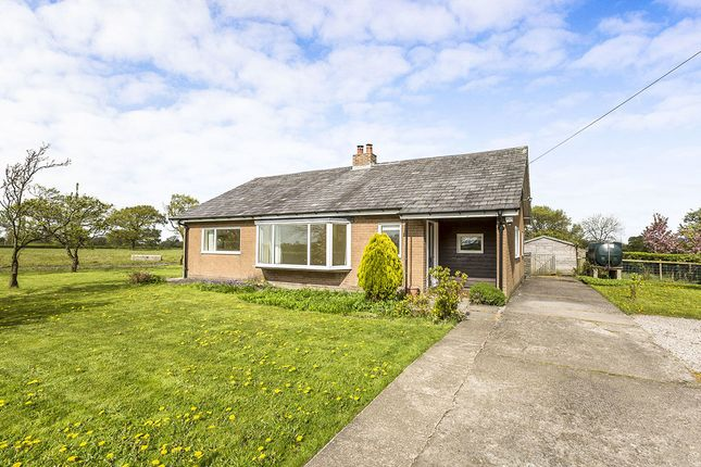 Thumbnail Bungalow to rent in Roots Lane, Catforth, Preston
