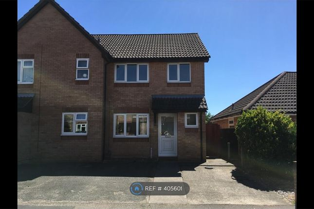 Thumbnail Semi-detached house to rent in Bignell Croft, Highwoods, Colchester