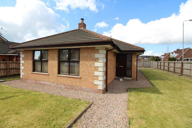 Thumbnail Bungalow for sale in Hillview Road, Carrickfergus