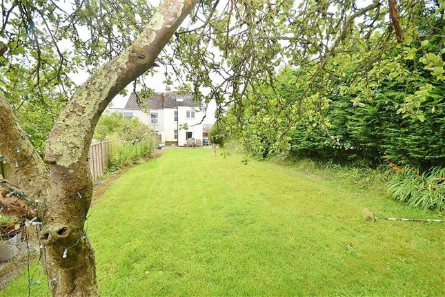 Thumbnail Semi-detached house for sale in Whiterock Road, Wadebridge, Cornwall