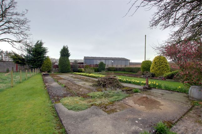 Thumbnail Land for sale in Holly House, Gaitsgill, Dalston, Carlisle